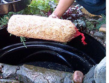 Koi pond care for the colder months gardening stuffs for Koi pond care