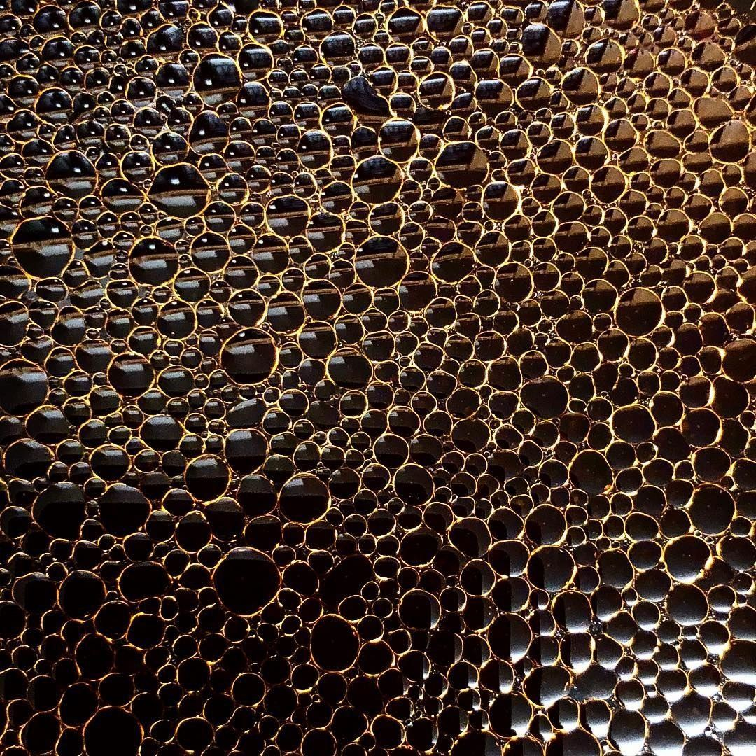 These 22 Photos Will Help You Figure Out If You Have Trypophobia Trypophobia Phobia Of Holes Phobias