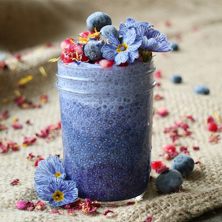 Blue Chia Pudding Recipe Butterfly pea flower, Chia