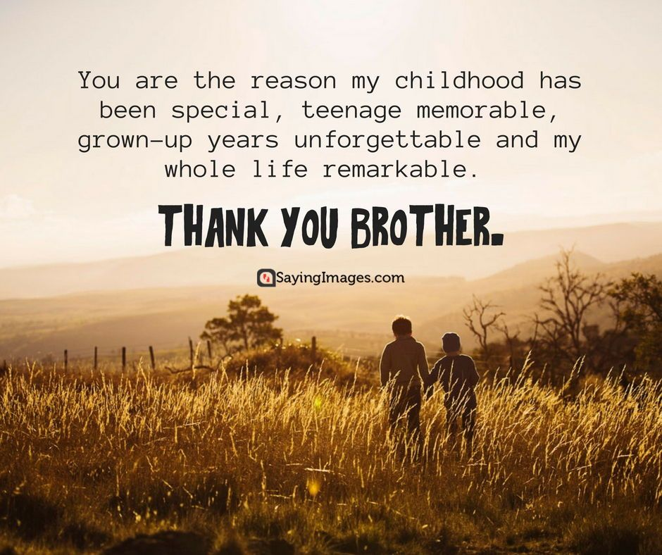 20 Fun And Loving Happy Brother S Day Quotes And Messages Sayingimages Happybrothersday Brothersdayq Happy Brothers Day Little Brother Quotes Brother Quotes