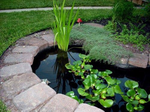 Garden pond design ideas did you enter to win toni for Garden pond design books