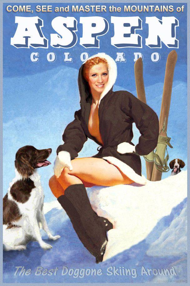 Details about Aspen Colorado Snow Ski Travel Poster
