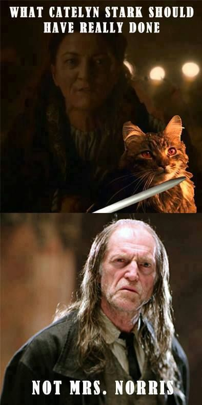 The Red Wedding might not have gone down if Catelyn had the right leverage... Harry Potter / Game of Thrones lolz