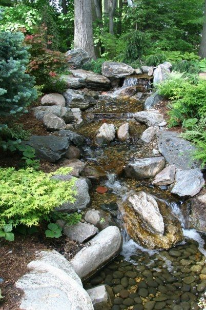 Great stream with wooded background cascade Pinterest Bassin