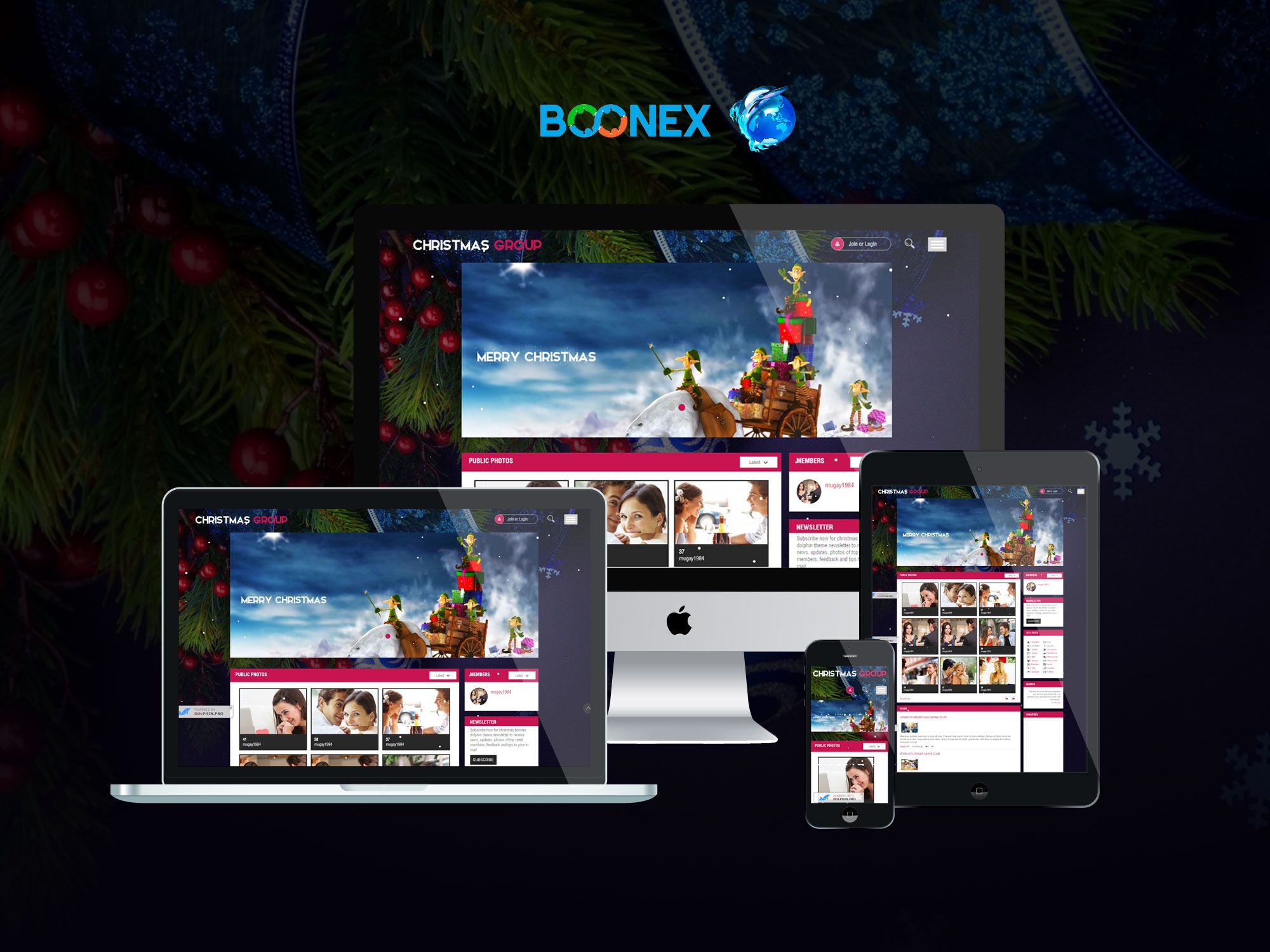 Christmas group - Download Premium boonex dolphin template, Download ...