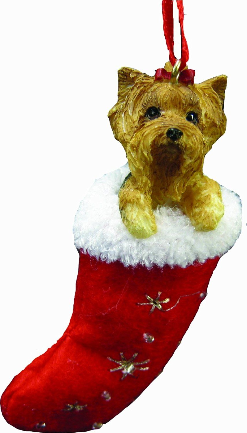 Amazon.com: Yorkie Christmas Stocking Ornament, Hand Painted and Stitched…