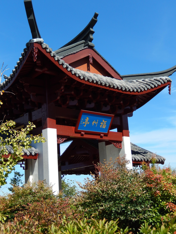 Fuzhou ting from fuzhou china built in ruston way