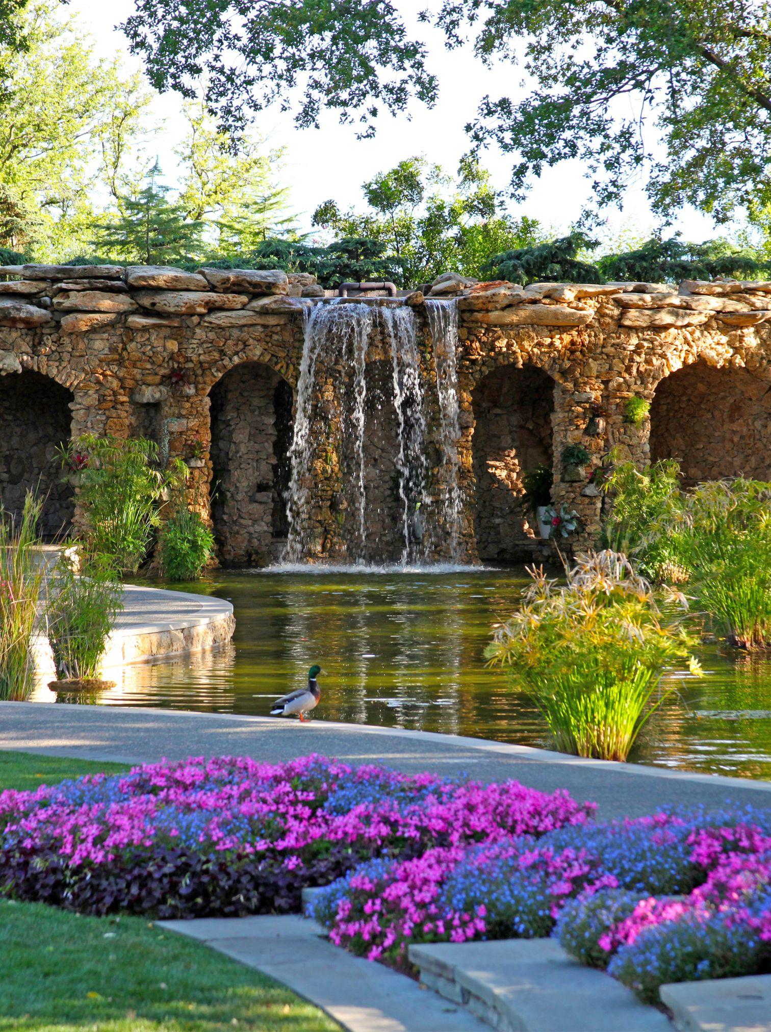 August Dollar Days Dallas Arboretum .