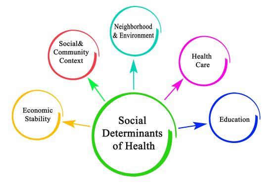 Addressing Social Determinants Of Health Lippincott Nursingcenter Social Determinants Of Health Public Health Nurse Public Health Career