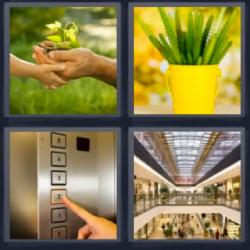 4 Fotos 1 Palabra Maceta Amarilla 4 Fotos 1 Palabra 4 Fotos 1 Palabra Palabras Letras