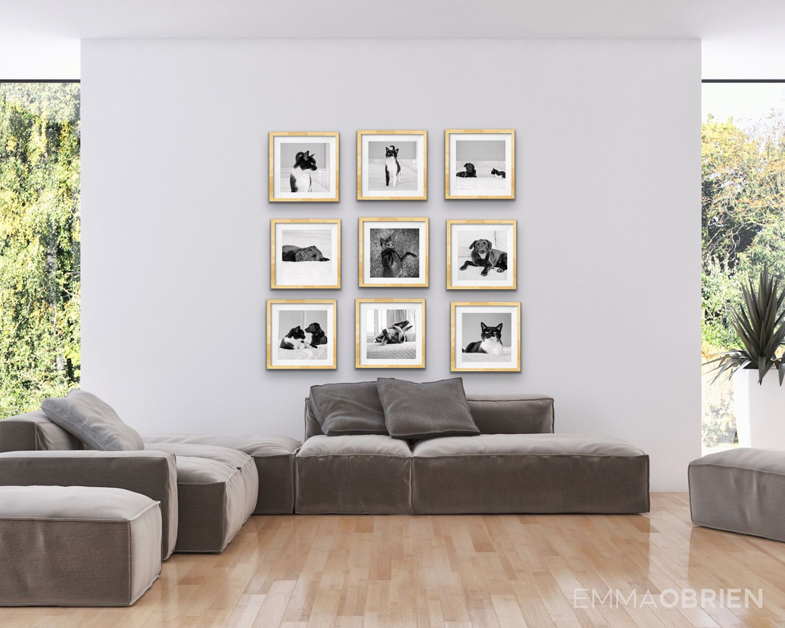 Wall Art And Framing Ideas For Pet Portraits Pets At Home Dog