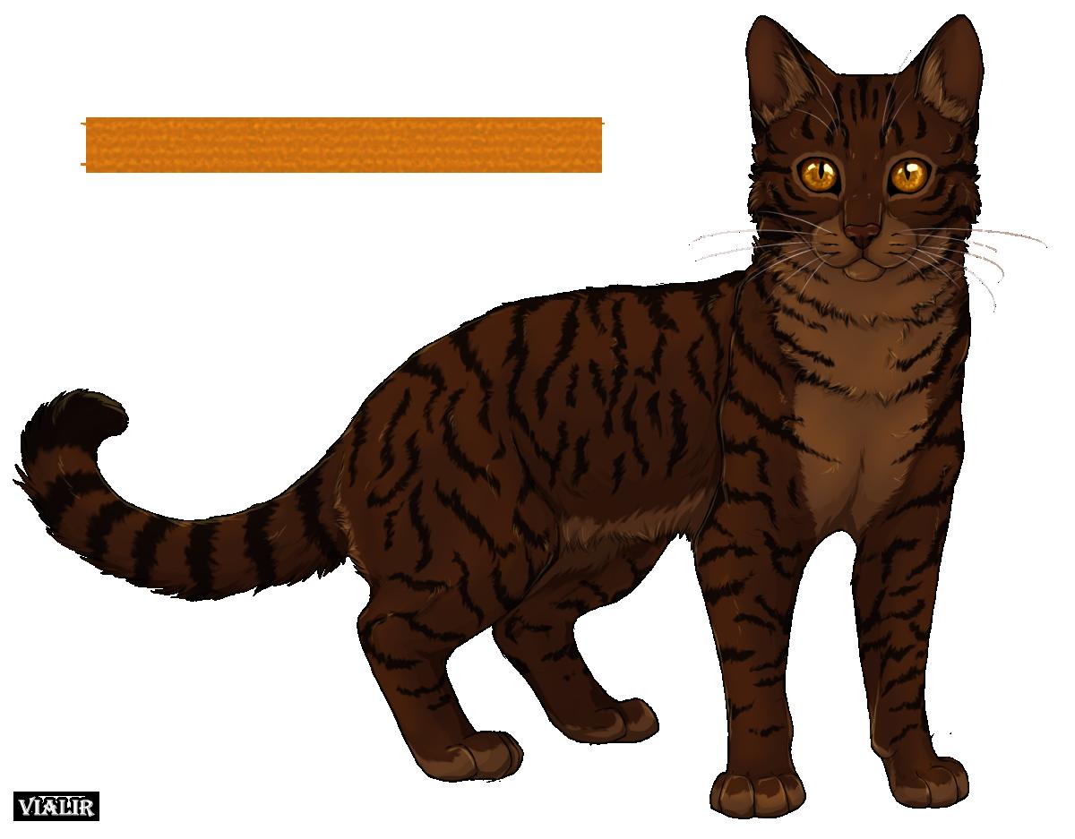 Brambleclaw by on DeviantArt
