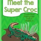 This packet includes resources to use with the Treasures reading program for Meet the Super Croc. I have included everything you need for a fo...