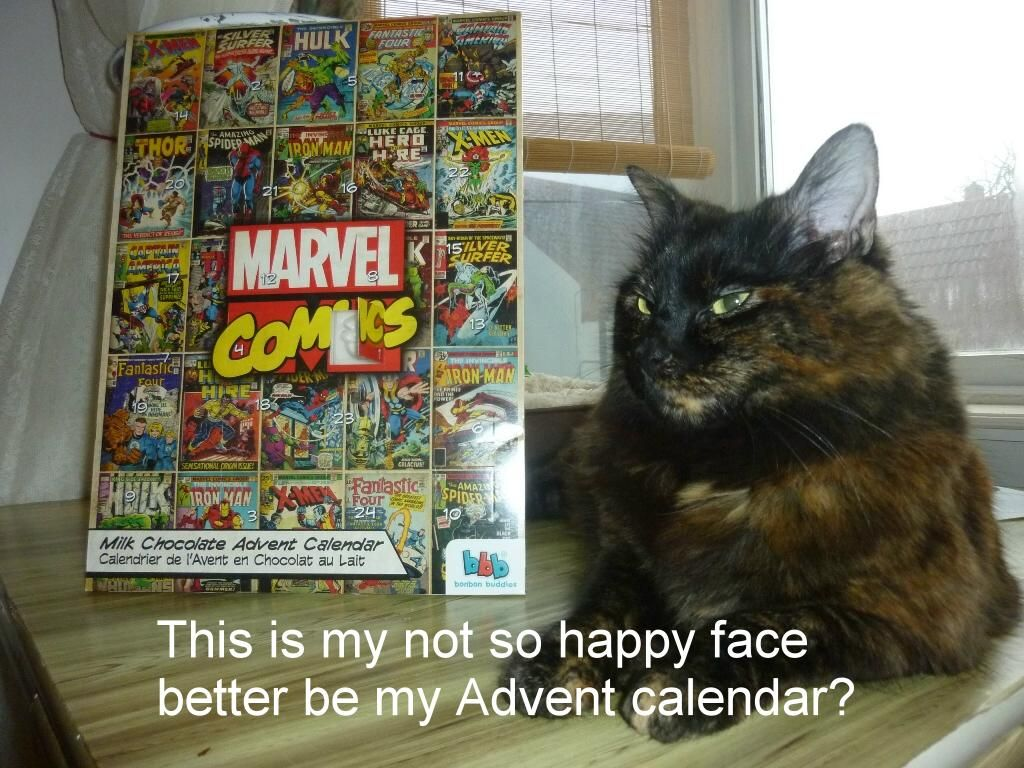 Sas Molly The Kitten Day 563 13th Dec Its All About The Advent Calendar See What Else Molly Gets Up To On Her First Blog Http Sasm Sas Kittens Marvel Thor