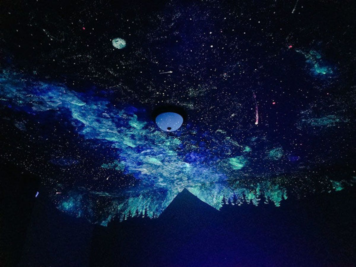 fantasy Star Ceiling Glow in the Dark Painting Kit wall painting murals space
