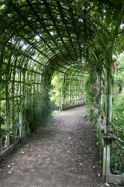 covered garden walkway Plant-covered walkway   For the Garden(s)   Garden, Garden