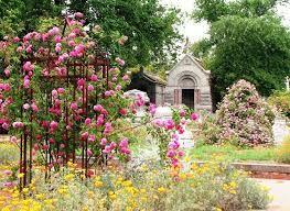 Sacramento S Cemetery Rose Garden Travel In California Hybrid