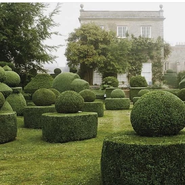 Instagram | Garden design, Beautiful gardens, Gorgeous gardens