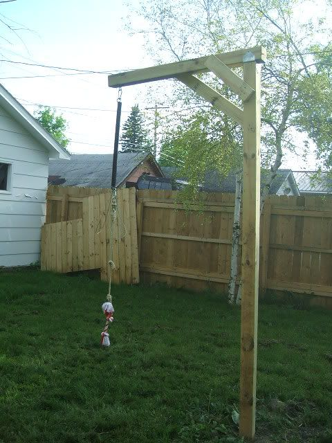 Your Spring Pole With Images Dog Backyard