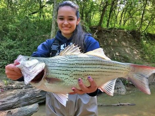 Carey thorn is a professional fishing guide on lake lavon for Lake lavon fishing