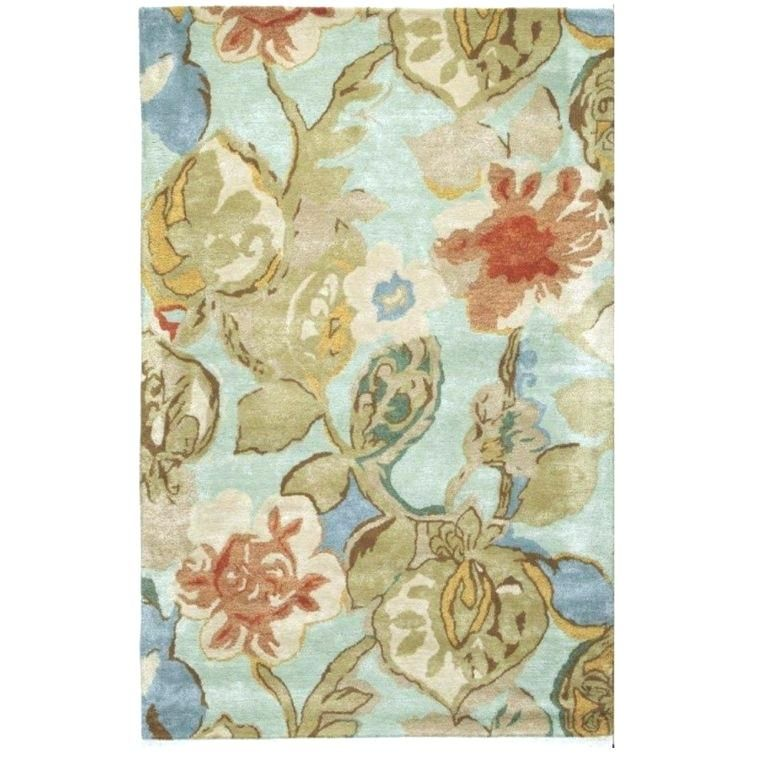Awesome Picture Of Home Decorators Outlet Rugs