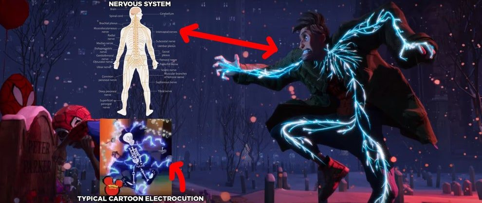 19 Small Spider Man Into The Spider Verse Details That Deserve A Large Round Of Applause Spiderman Spider Verse Seth Rogen Movie