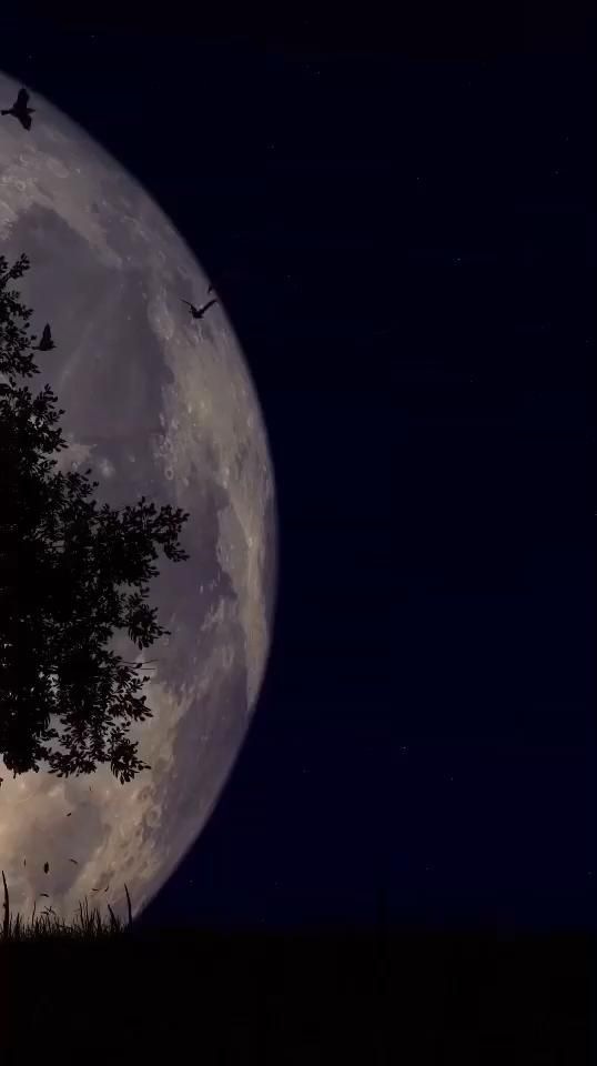 Moon River(Vocal Audrey Hepburn) - Henry Mancini