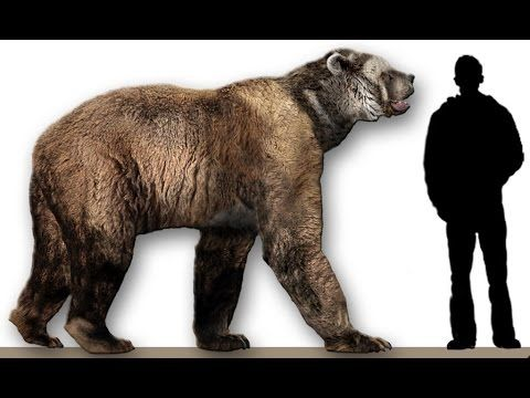8 10 Unbelievable Animals That Coexisted With Humans