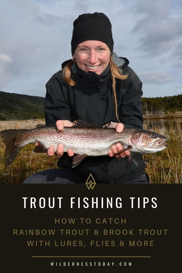 Check out this comprehensive trout fishing guide and get our favorite tips to help you catch your s