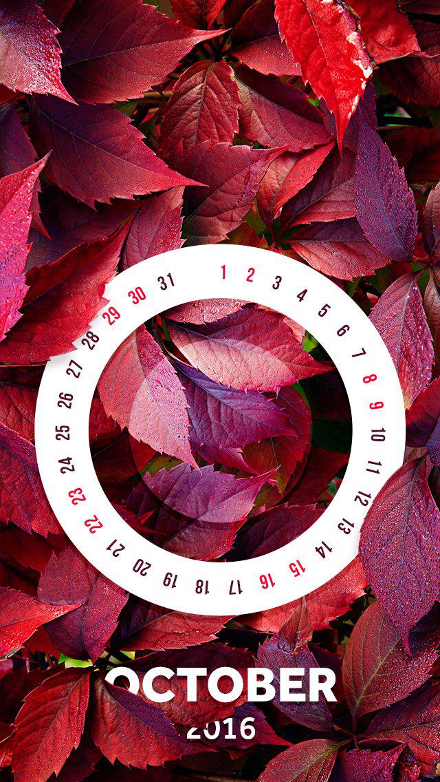 Wallpaper iPhone October 2016 calendar ⚪️