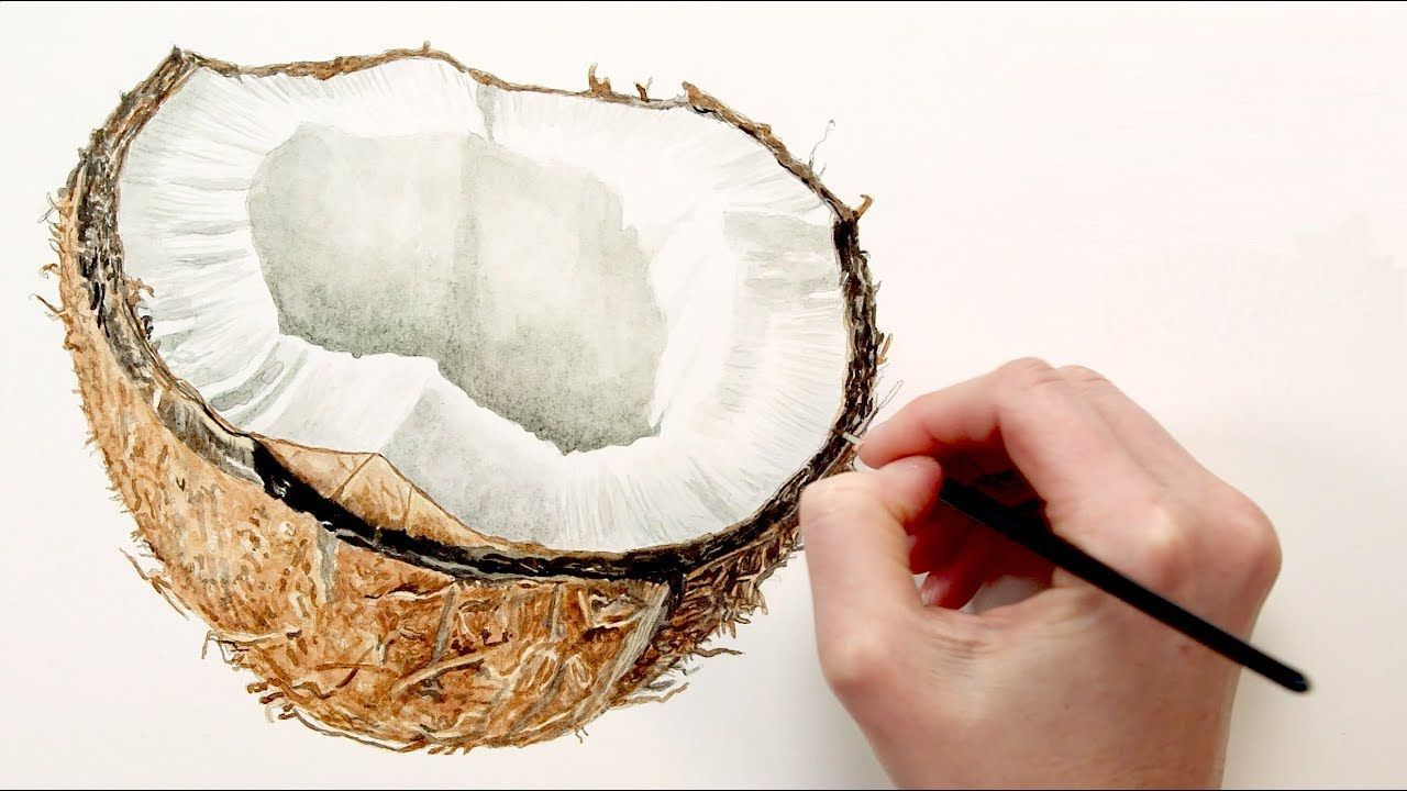 Painting The Hairy Texture To A Coconut Shell In Watercolor With