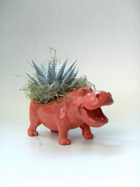 Hey, I found this really awesome Etsy listing at https://www.etsy.com/listing/194301992/coral-pink-hippo-succulent-planter-mini