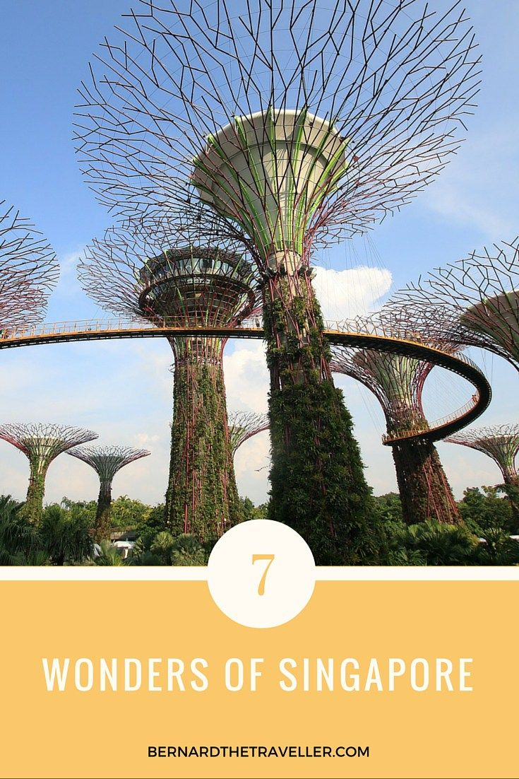 Singapore is the most expensive city, but it is a must visit country when…