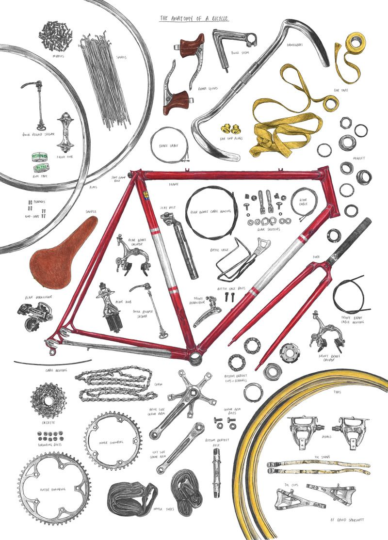 The Anatomy of a Bicycle by David Sparshott | Illustration ...