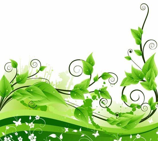 Fresh Green Floral, free vector graphic Nyomdák Pinterest - fresh invitation template vector