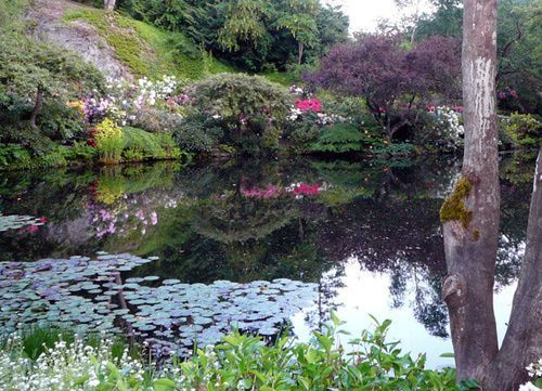Victoria #butchartgardens Reflections in Sunken Garden Pond at The Butchart Gardens #butchartgardens Victoria #butchartgardens Reflections in Sunken Garden Pond at The Butchart Gardens #butchartgardens