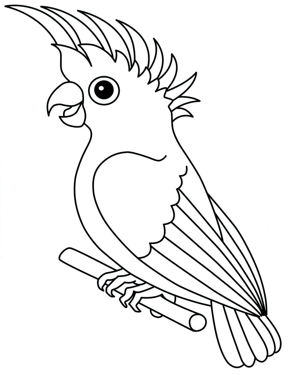 Раскраска Попугай | Раскраски, Рисунок птиц, Шаблон слона
