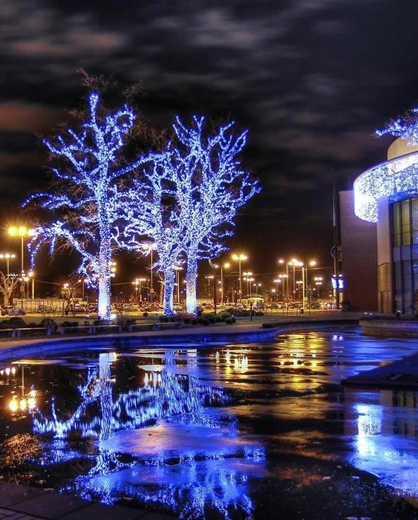 2000 Adventslichter #gewinnspiel #advent #weihnachten #city #gewinn #xmas #blume2000 #blume2000de #lichter #baum