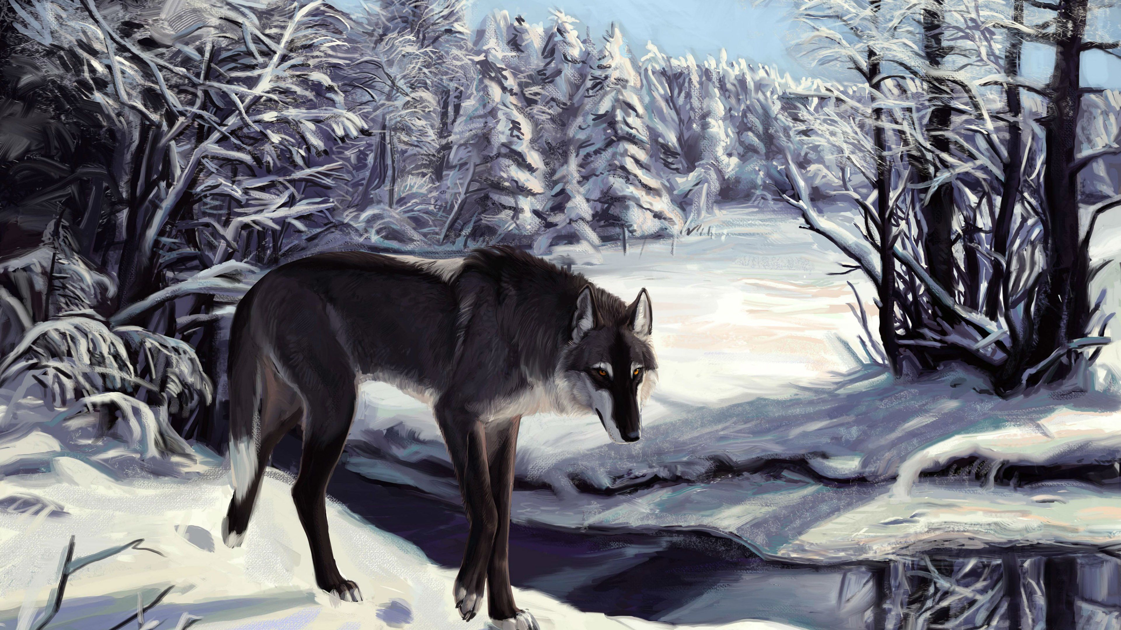 Wolf In The Snowy Forest Wallpaper
