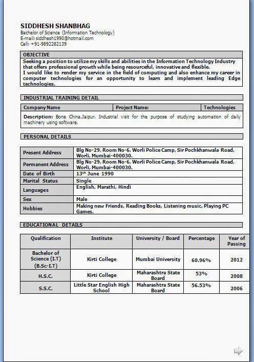 curriculum vitae profile examples Sample Template Example - examples of career objective