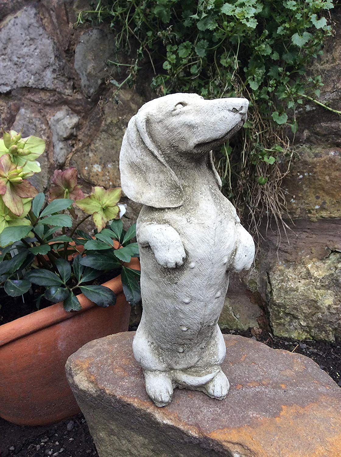 Stone Dachshund Sausage Dog Garden Ornament Statue Amazon Co Uk