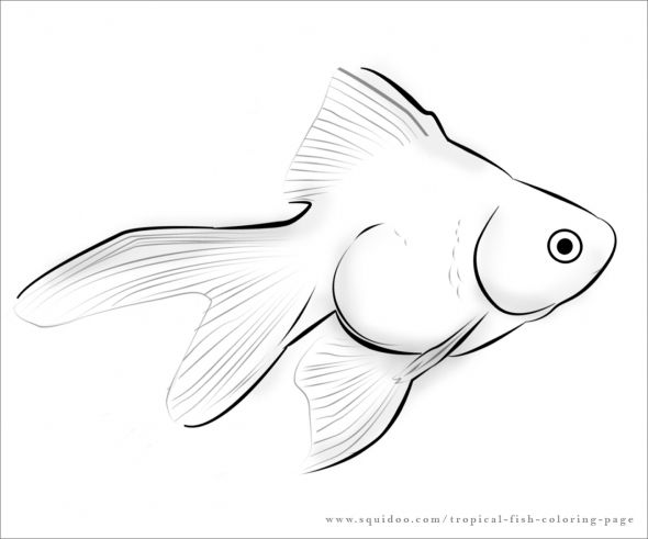 fish tropical fish coloring page