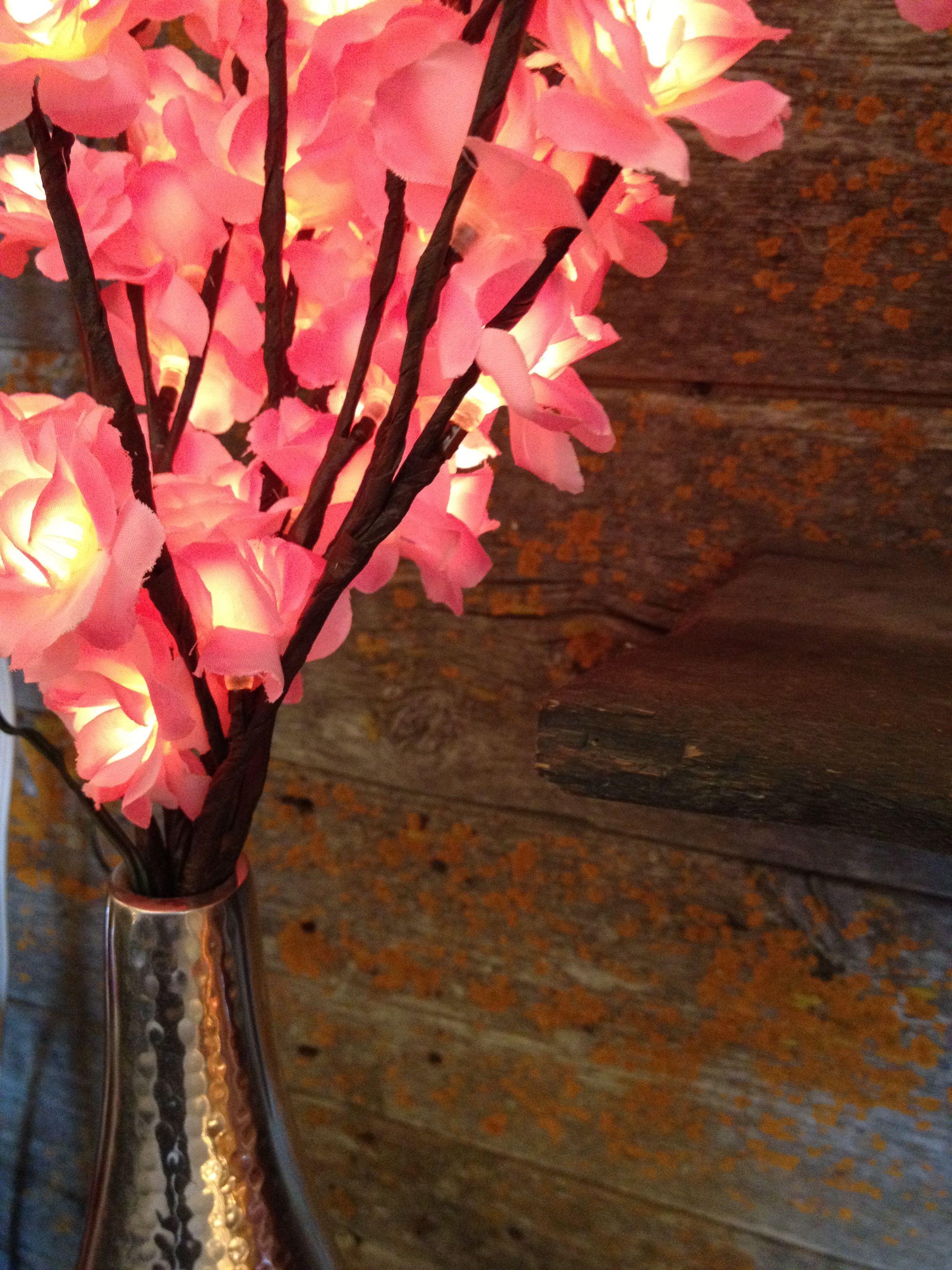 Illuminated floral designs...
