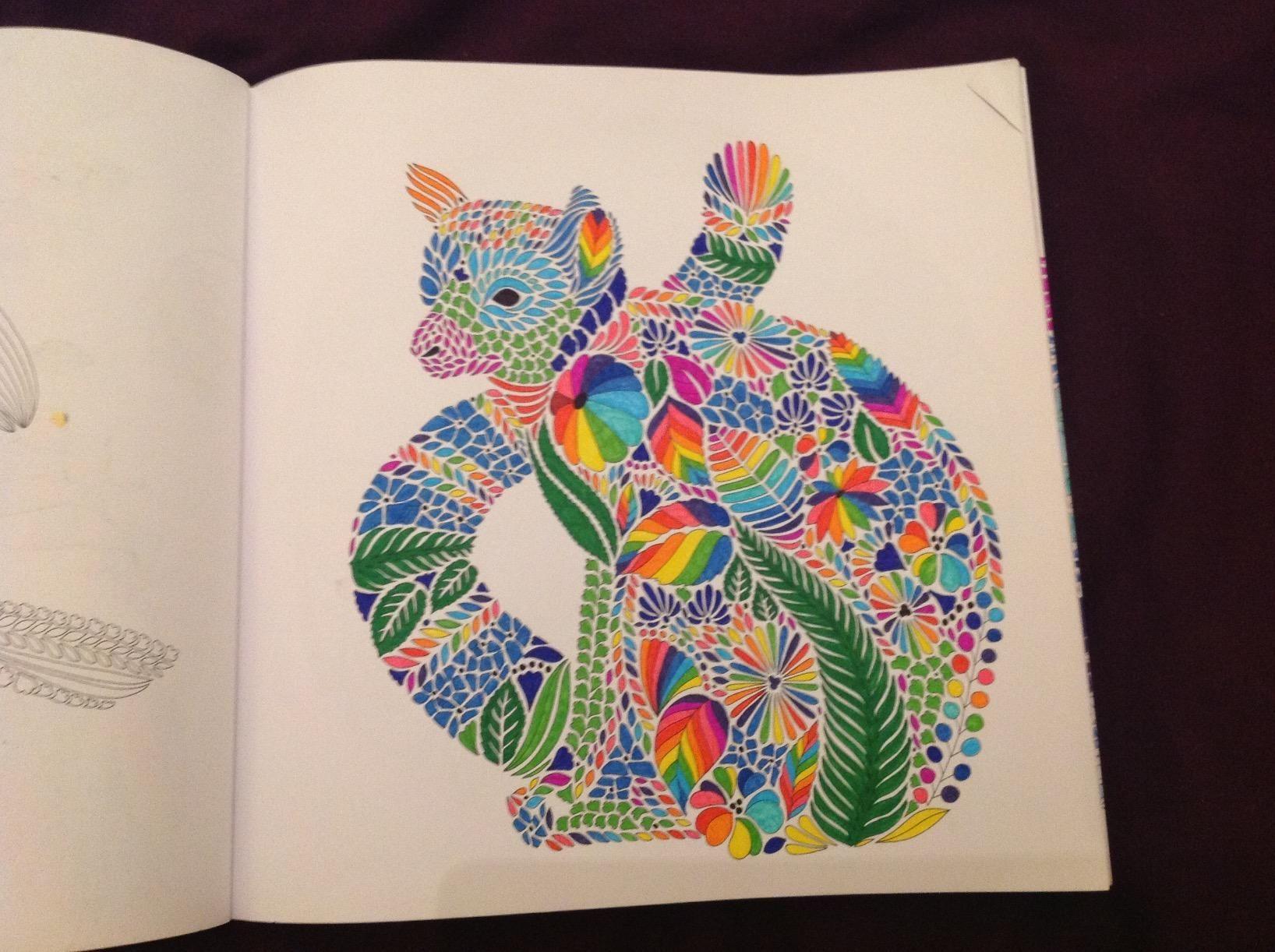 Millie Marottas Tropical Wonderland A Colouring Book Adventure Amazoncouk