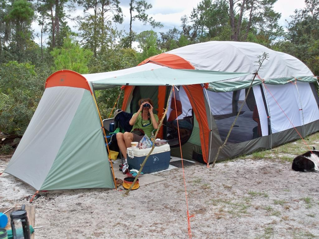 REI Kingdom 6 Tent - Google Search & REI Kingdom 6 Tent - Google Search | getting out | Pinterest ...