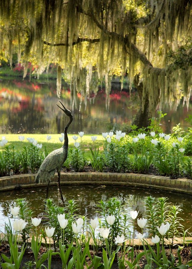 Stsatuette For Outdoor Ponds: Crane Statue And Pond, Middleton Place, Charleston, SC