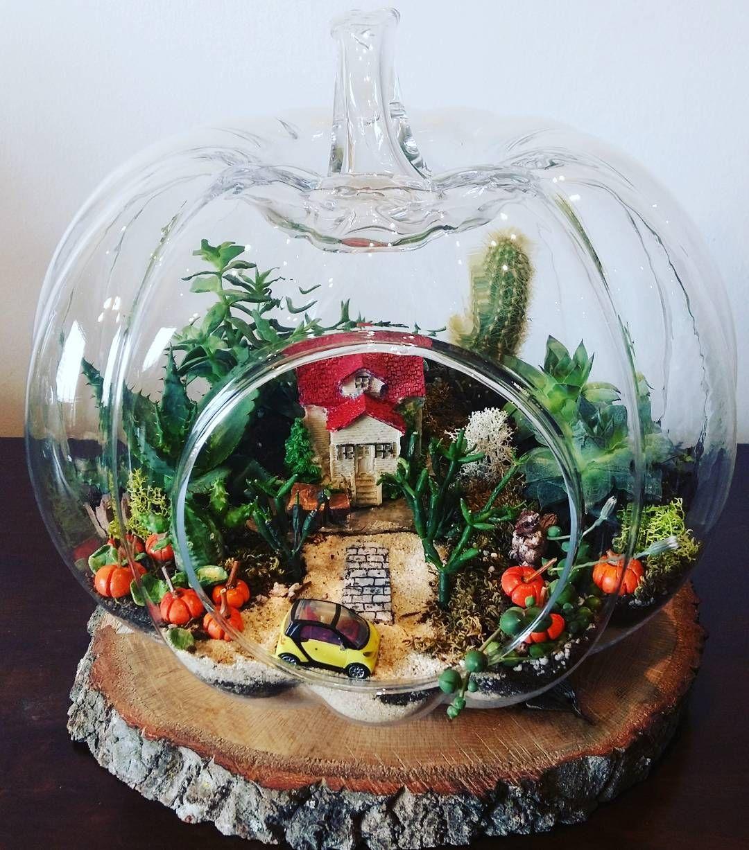 "63 Likes, 1 Comments - #izmir_teraryum# (@dirfil_garden_terrarium) on Instagram: ""#kişiyeözeltasarım#teraryum#terrarium#kabak#kabakteraryum#kaktus#sukulent#succulents#"""