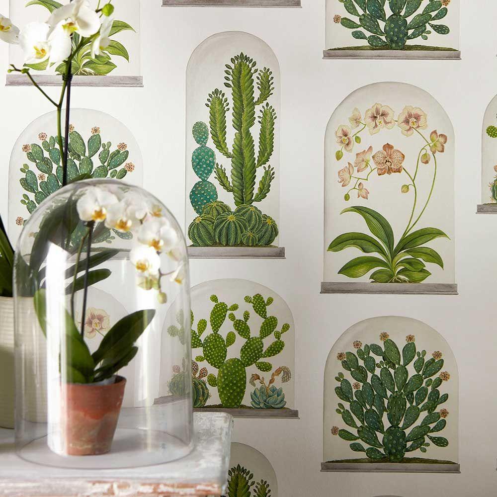 Terrariums by Sanderson Chalk / Green Wallpaper
