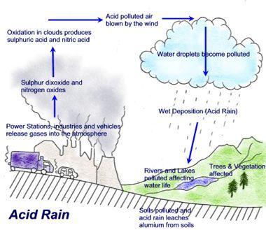 acid rain diagram worksheet - Google Search Useful stuff Sample