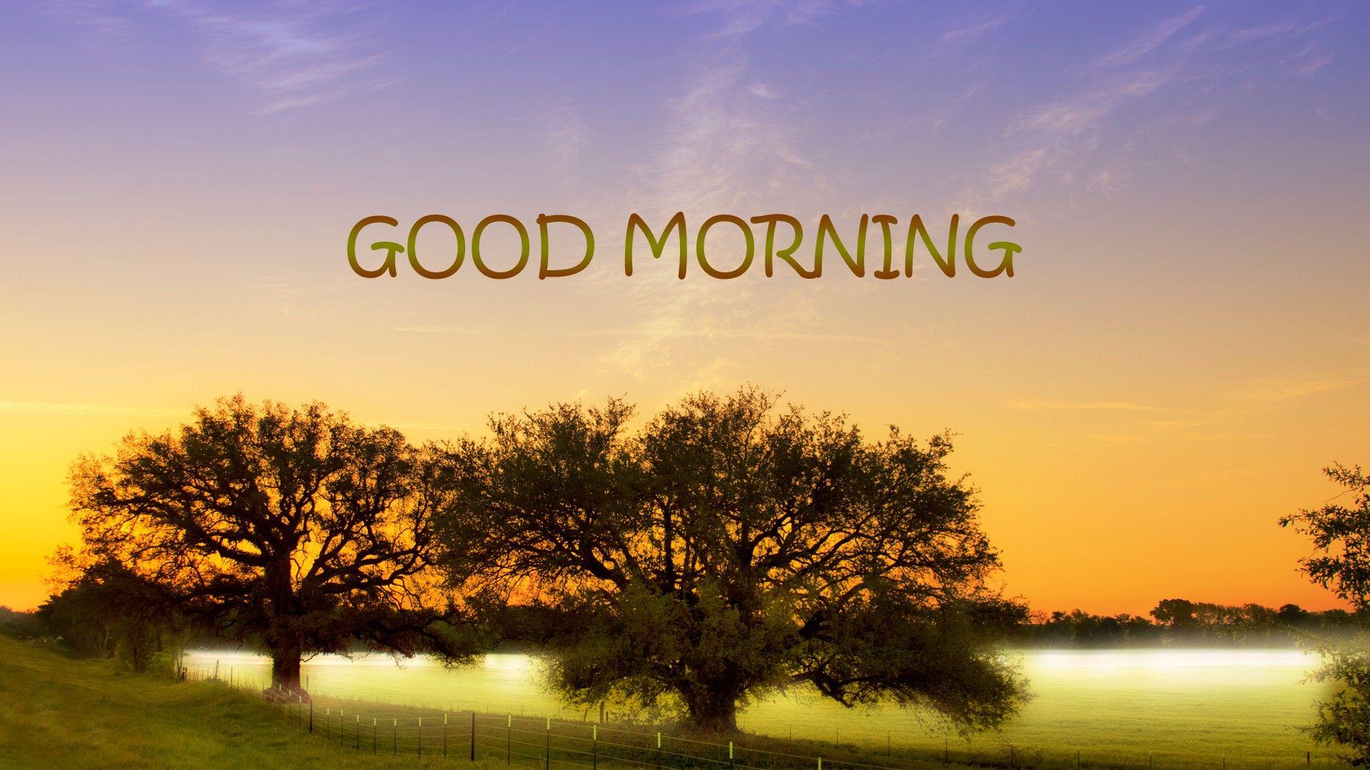 Buona giornata a tutti! #joele #buongiorno #colazione #sveglia #mattina #goodmornig